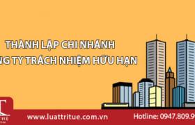 Thủ tục thành lập chi nhánh Công ty TNHH tại Việt Nam